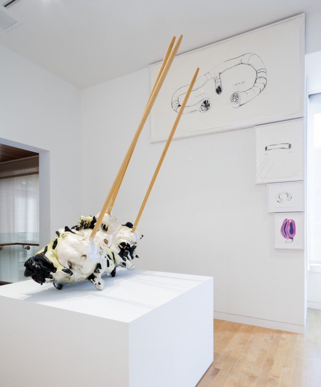 MEATY BEATY BIG AND BOUNCY, Aldrich Contemporary Art Museum, Installation View 10, 2014