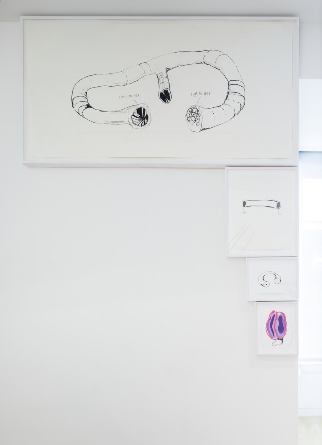 MEATY BEATY BIG AND BOUNCY, Aldrich Contemporary Art Museum, Installation View 9, 2014